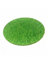 "image: Grass Finish Masonite Cake board 12"" round"