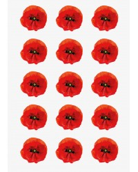 Design Sheet edible image Poppy Flowers