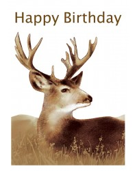 A4 Edible icing image Stag or deer (hunting) HAPPY BIRTHDAY