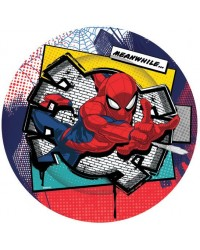 Spiderman party plates (8)