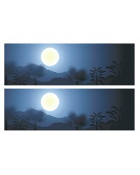 A3 Edible icing image sheet Tropical or Native trees Night Moon