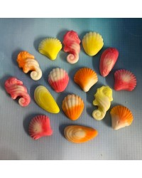 Fruits of the sea candy lollies seahorse and seashells