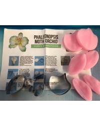 Phaleonopsis Moth Orchid flower cutters and veiner set