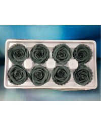 PRESERVED FLOWERS CLASSIC ROSE VINTAGE Silver Grey