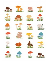 Character edible icing image sheet Toadstools or Mushrooms