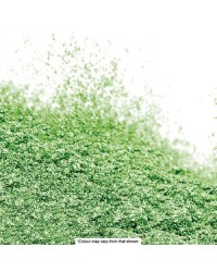 Barco Lilac Label pearl lustre dust powder Moss green