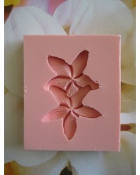 image: Frangipani (DOUBLE) silicone mould 45mm