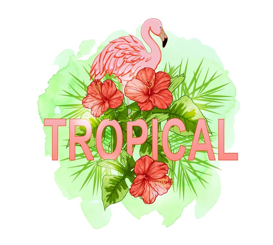 Flamingo & Tropical party